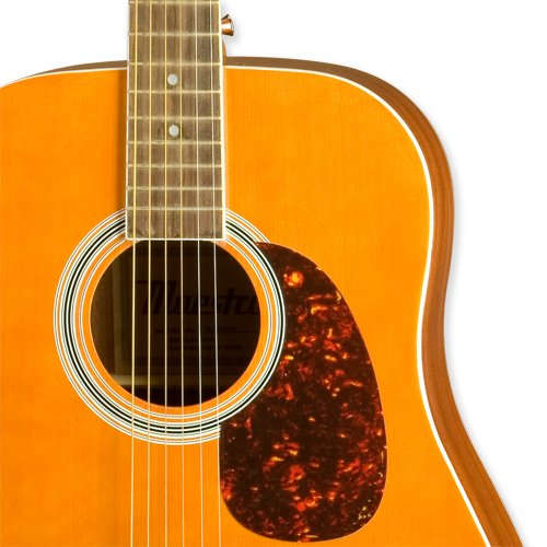 Maestro by Gibson 41 Acoustic 1